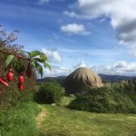 Knockalla yurts and fuschia hedgerows