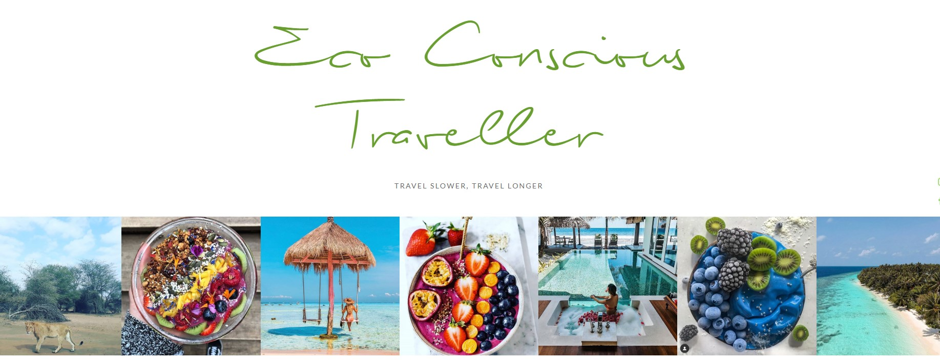 Website homepage image of Eco Conscious Traveller
