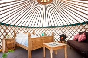 Inside 'Crocullia' yurt